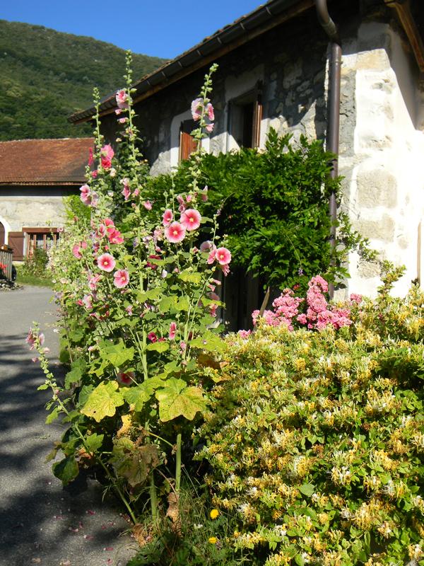 Haut_village_04